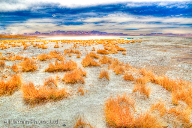 Bolivia desert scene
